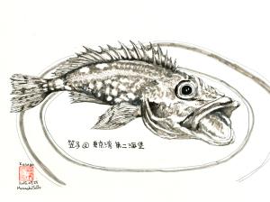 笠子@東京湾・第二第二海堡