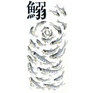 魚編シリーズ…鰯(いわし)