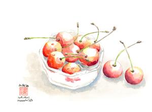 食べる宝石…佐藤錦