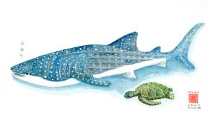 甚兵衛鮫と海亀