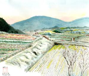 奈良の桜井でマジックアワー