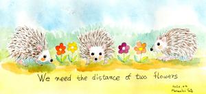 ハリネズミの距離