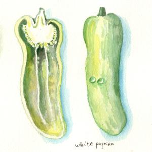 white paprika