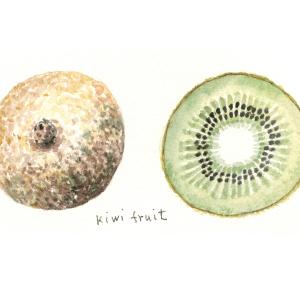 大地の恵み…kiwi fruit
